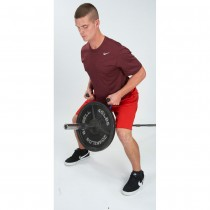 Pull Force T-Barbell Row Regular Handles