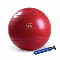 SPRI Professional Plus Stability Body Ball with Air Pump