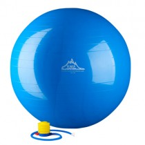 Black Mountain Products 2000 lb Anti-Burst Stability Ball with Pump